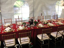 Spring holiday dinner in tent.